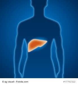 Leberkrebs (Leberkarzinom) – Ursachen, Symptome und Therapie