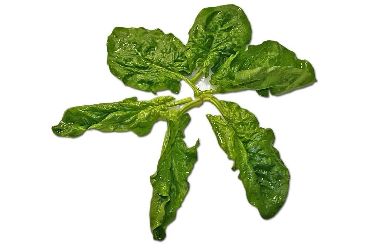 Eisenhaltige Lebensmittel