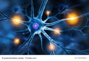 Nervenzelle in Aktion