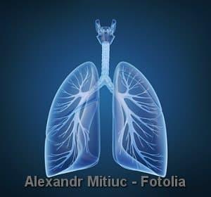 © Alexandr Mitiuc - Fotolia.com