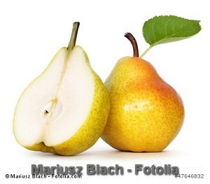 © Mariusz Blach - Fotolia.com