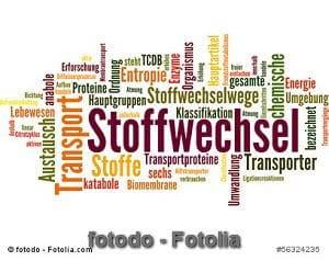 © fotodo - Fotolia.com