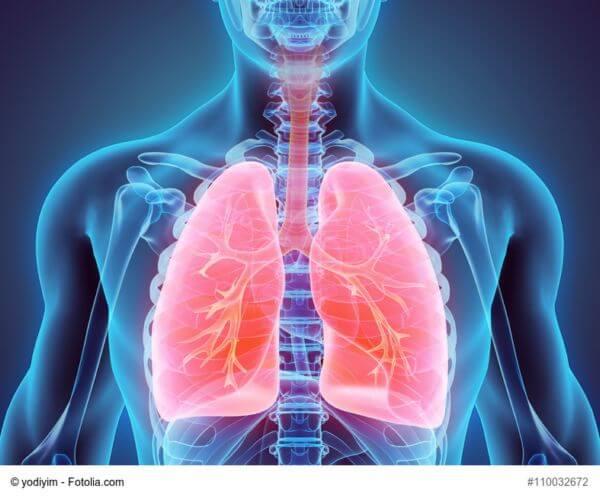 Neue Therapieoption bei Lungenkrebs?