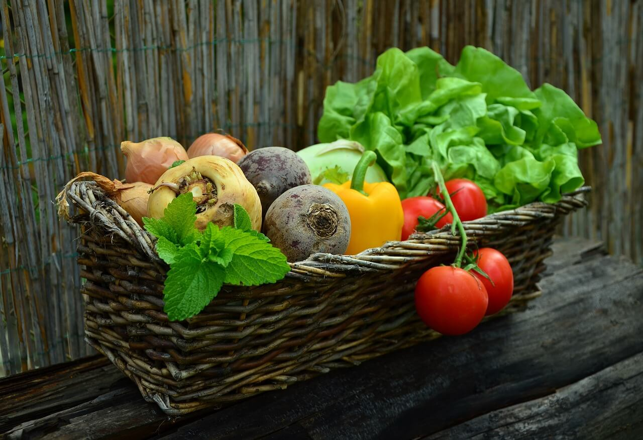 Ernährung bei Stoma