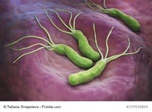 Bild von Helicobacter Pylori