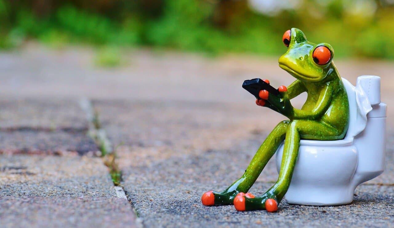 Grüner Stuhlgang Ursachen Behandlung Und Hausmittel