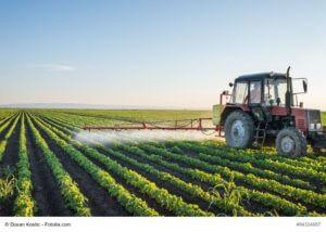 90 Prozent der Soja-Ernte dienen Nutztieren als Futtermittel.